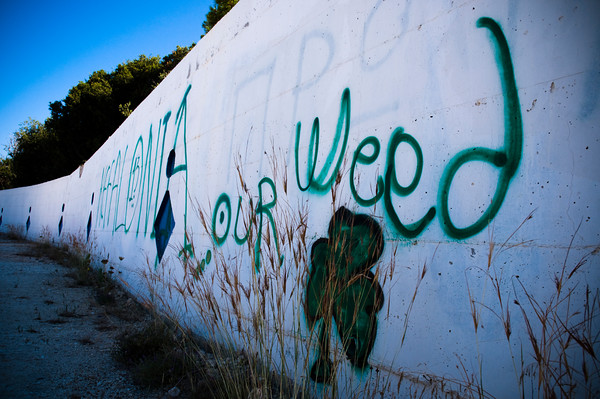 DSC 9956 