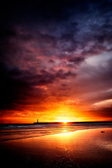 DSF3155-1 