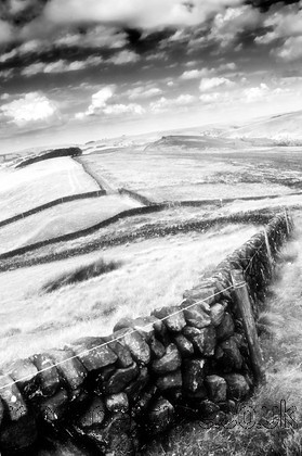 DSC 1008 ir 2 