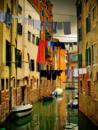 PB033919 