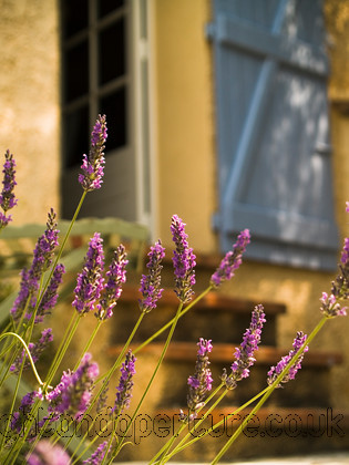 Callian8 