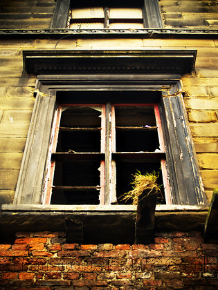 The window copy 